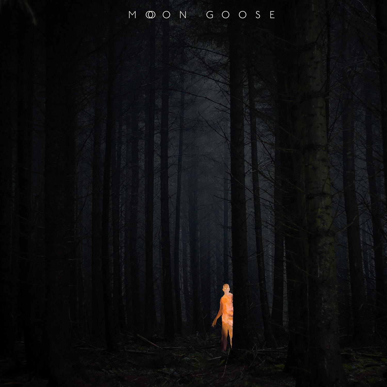 Moon Goose
